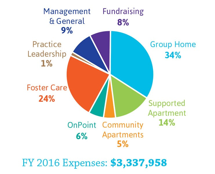 Fiscal Year 2016 Expenses pie chart