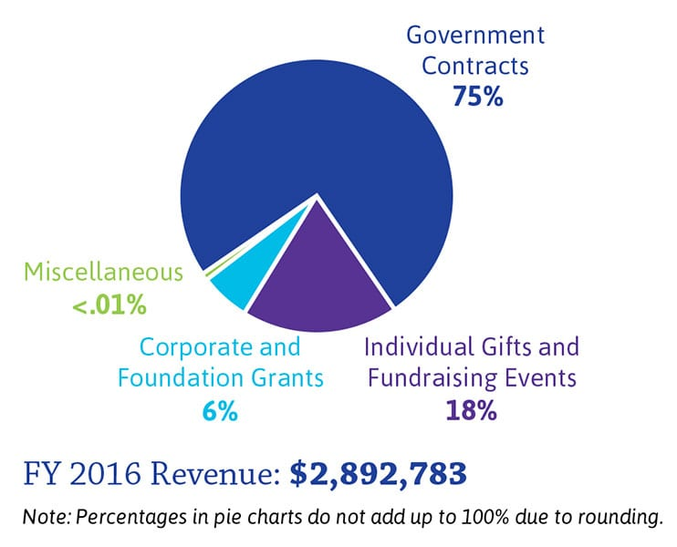 Fiscal Year 2016 Revenue pie chart
