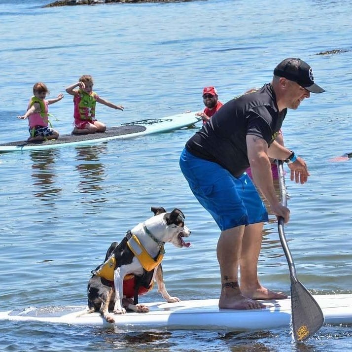 Man riding paddle board with his dog while families smile in the background