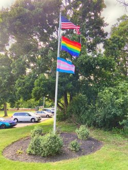 A flag pole with an American flag, rainbow pride flag, and transgender pride flag.